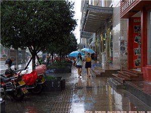 在雨中,每一步都是不同的风景(组图)