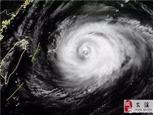 """跨区备战,国网福建电力迎战超强台风""""玛莉亚""""!"""