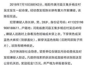 """南阳""""7.10""""命案的公告,事故造成3死2伤!警方悬赏万元捉嫌犯!(内"""