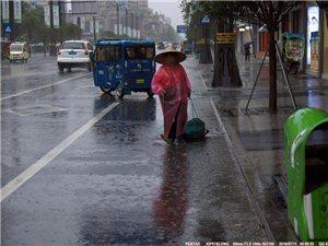 【汉洲悦图】在雨中,有一位环卫工人~~~致敬平凡岗位的坚守!