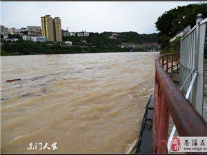 【苍溪】嘉陵江又涨水了【图】
