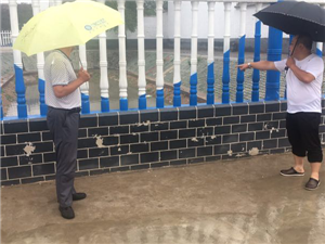 编办派驻顾贤村第一书记雨中查看村内排水情况