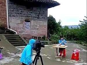 大制作!央视摄制组来宜宾屏山县了!宣传推广茵红李啦!