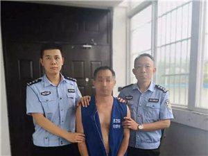 刚刚发生!河南男子吃了四只鸡,判了5年罚3万!网友吵翻了…