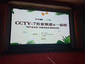 """""""农产品寻宝""""全国首选活动合阳赛区圆满落幕"""