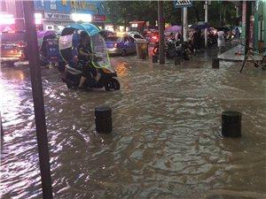 昨日新濠天地娱乐官网暴雨,看海锦集!