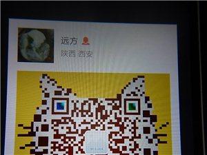 美丽蓝田2018,致敬基层好干部(张森强)