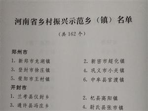 河南确定18个乡村振兴示范县市(区)、162个示范乡镇 名单
