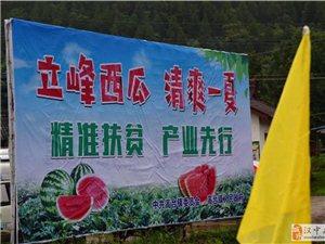 南郑区高台镇第二届西瓜旅游扶贫文化节开幕