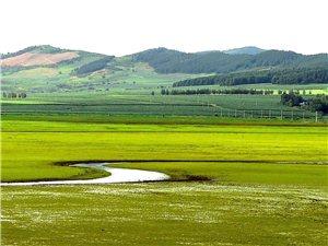 向阳湖草原