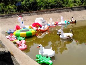 好消息:  三伏天避暑戏水好去处一一金牛庄园(丰都江北冯家坝)
