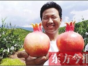 荥阳小伙大学毕业跑四川种石榴 承包果园被疑搞传销