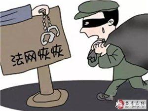 盐亭|男子判刑7次仍不思悔改 再次盗窃被判九个月