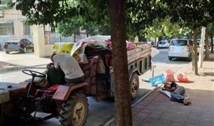 三伏天!澳门威尼斯人游戏网址街头偷拍的照片!