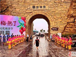 《七绝》写在第三届杨梅节