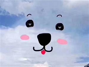 好吧,云彩都是你创造的了!
