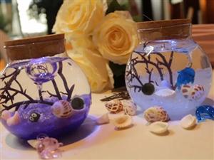 【凯德玖号院】瓶装大自然,把海底世界带回家,水族瓶DIY欢乐来袭