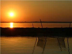 太阳 再见 、、、