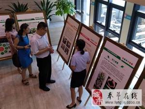 与重庆共成长:国家发改委来渝调研
