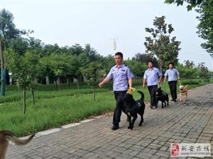 招收高级武装押运,高级侍卫,安检,警犬训导员,辅警队员