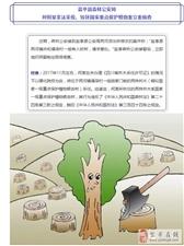 守护绿川,重拳出击|严厉打击破坏森林资源违法犯罪!