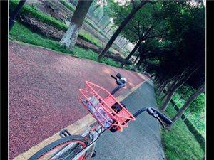 骑着摩拜单车游三星堆绿道,看看风景吹吹风,心情非常好!