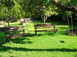 【圣庄园·中园】有一种生活叫住在公园里!