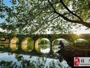 住建部公示:澳门网上投注游戏县拟命名为国家园林县城