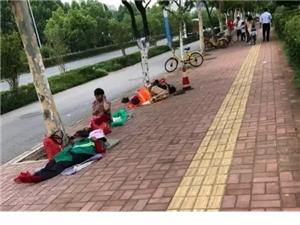 36℃,街上发生的真实一幕…整个澳门网上投注游戏朋友圈都在传!