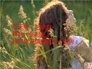 生命如花、生命如歌!――关爱生命,让世界每一个角落都充满阳光