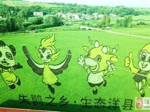 世界纪录认证官要来洋县认证稻田艺术蔡伦像