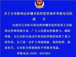 关于公布陈鸿志案举报电话的通告