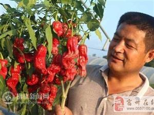 朱现合:萧县贫困户的贴心人