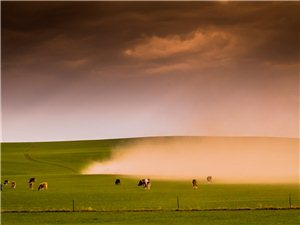 天堂草原—西乌珠穆沁