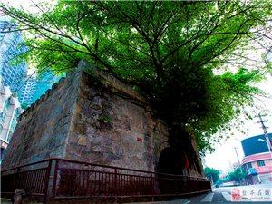 权威发布|关于市级文物保护单位玉带城门安全隐患整治问题的回复