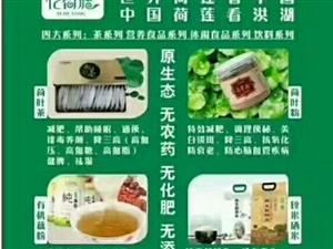 【专家讲谈养生】荷叶茶和荷叶粉——减肥和保健功效