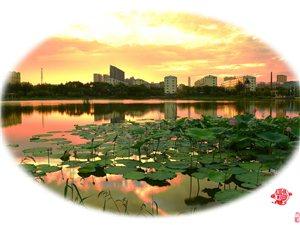 彩云装扮桦西湖