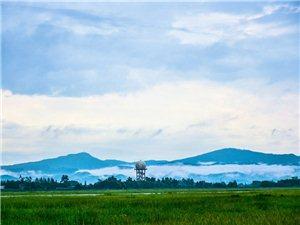 【汉洲悦图】雨后松林龙泉山云雾缭绕,好似人间仙境(组图)