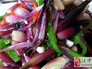"""汉中美食:家家户户都有的名贵""""山珍野味"""""""