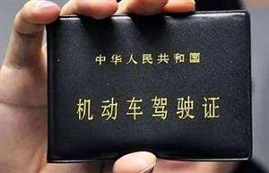 河南有驾照的恭喜了!公安部重大宣布!9月1日起全面启动推行!