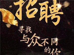 红杉娱乐亿丰咨询诚聘:客户经理  策划经理  业务助理