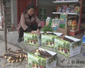 """邛崃鼎锅村:发展高山生态蔬菜产业;争创""""绿色""""品牌"""