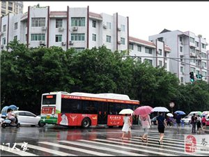 【苍溪】雨中有美景【图】