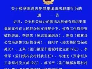 陈鸿志犯罪案10多名犯罪嫌疑人被刑拘