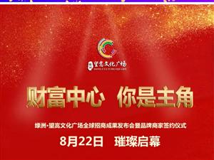 """【绿洲·望嵩文化广场】""""财富中心 你是主角""""招商成果发布会于8月22日"""