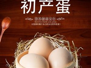武汉华牧生物科技股份有限公司包装简单的绿无忧鸡蛋产品