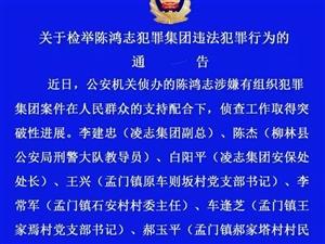 柳林陈鸿志犯罪案4名涉案村干部被刑拘