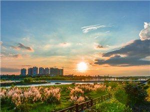 【汉洲悦图】鸭子河的美好时光,是在秋天的傍晚(组图)