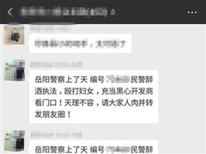 岳阳楼警方查处一起网络传谣案