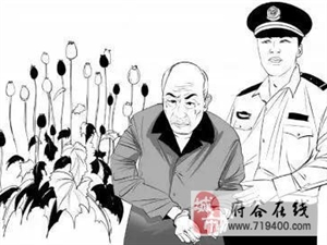 【禁毒动态】跑不了!一男子非法种植罂粟潜逃4年被抓!